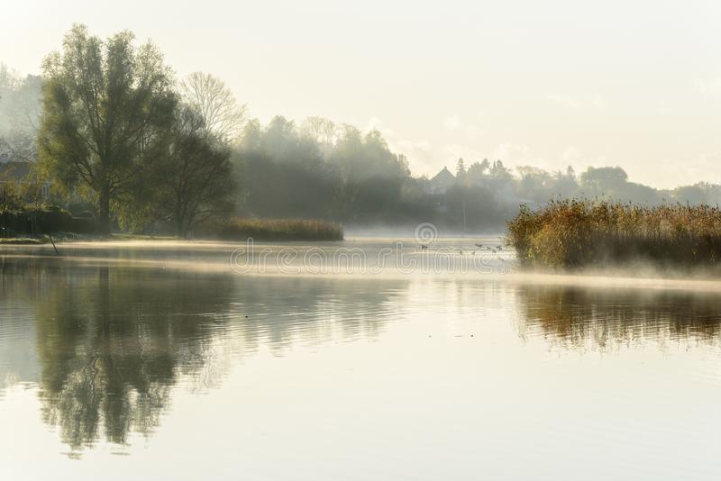 Misty autumn morning with reflections in the water royalty free stock images