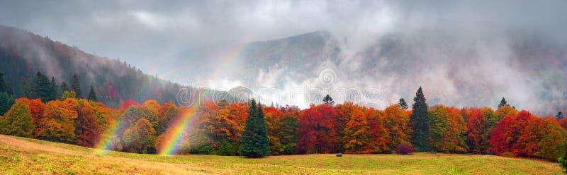 Misty autumn Transcarpathia royalty free stock image