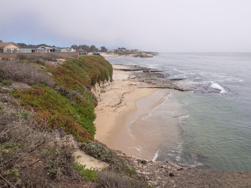 Misty California Coast arkivbild