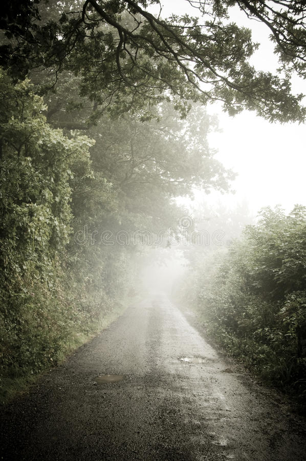 Download Misty Country Lane Royalty Free Stock Photos - Image: 15728128