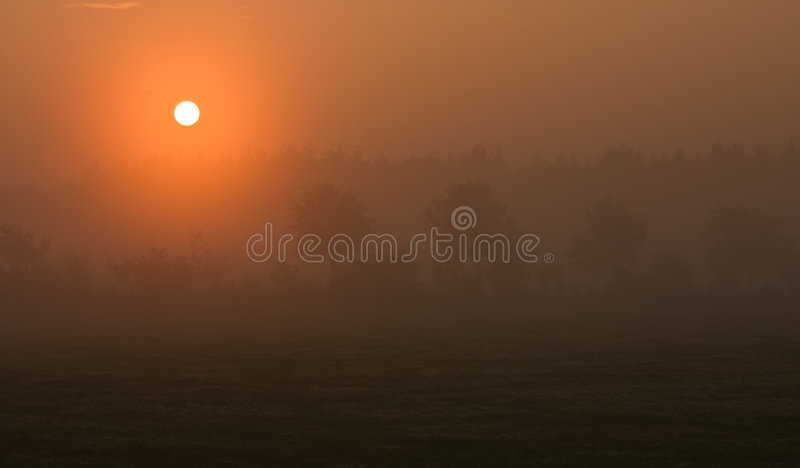 Misty dawn royalty free stock photo