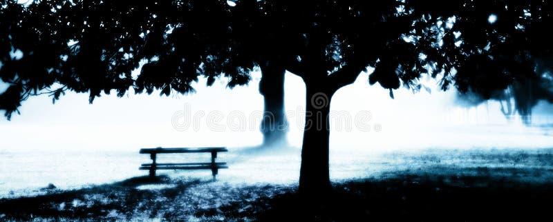Misty Dawn stock image