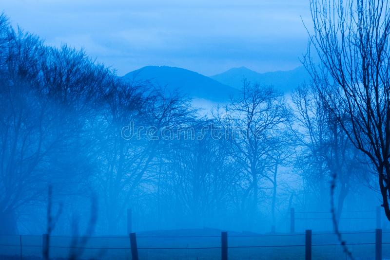 Misty day in the italian countryside. Fog after a cold rainy day in the woods of the Italian countryside royalty free stock photos