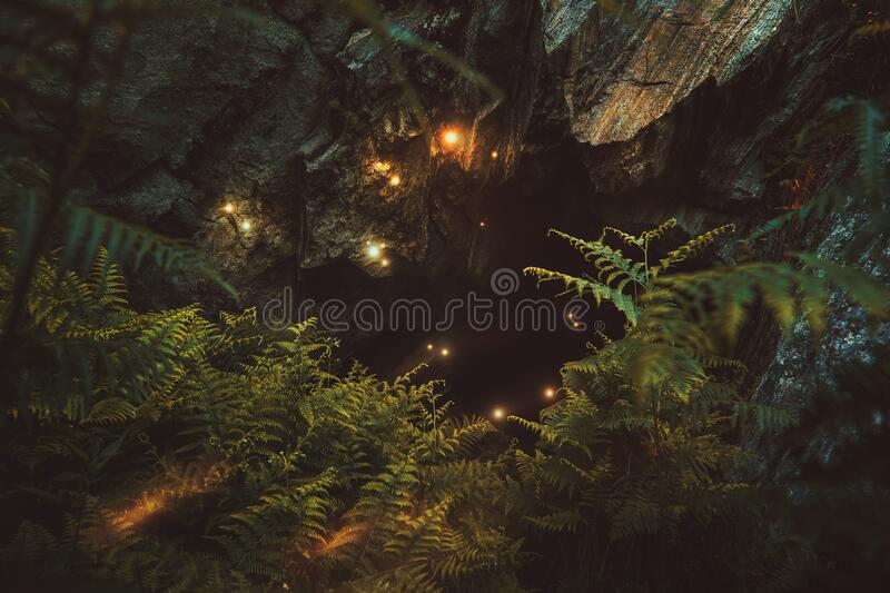 Magical cave in the forest stock images