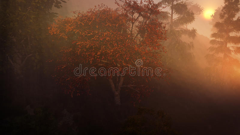 Misty Fall Forest In Sunset stock illustratie