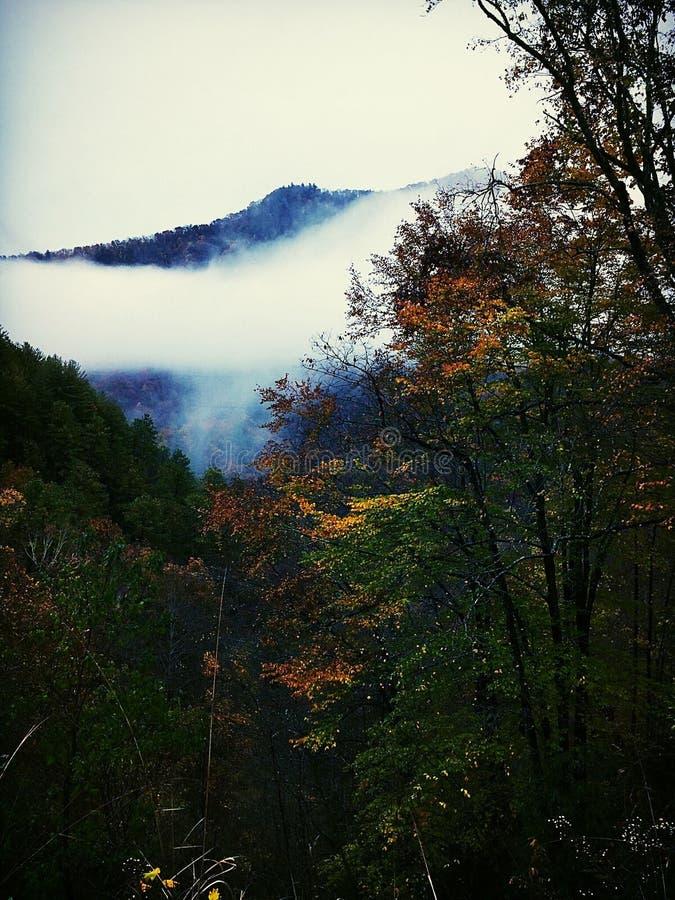Misty Fall Morning no grande Smokies fotos de stock