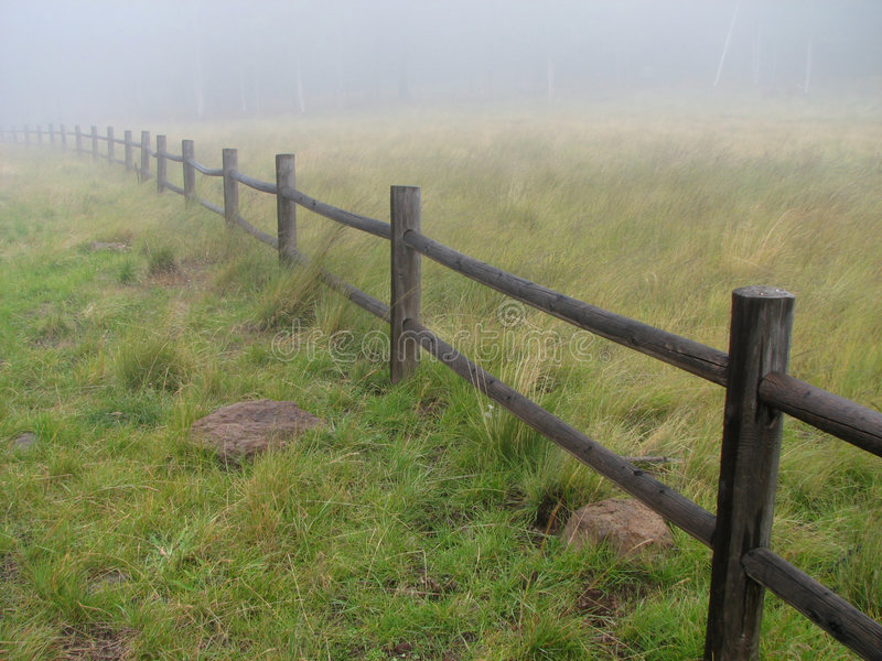 Download Misty fence stock photo. Image of atmospheric, grass, damp - 8372506