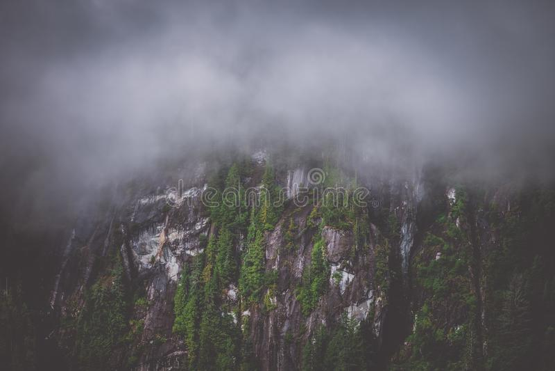 Misty Fjords Foggy Forest du nord-ouest image stock