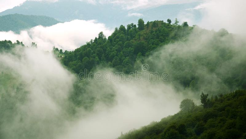 Misty forest and clouds above jungle royalty free stock photos