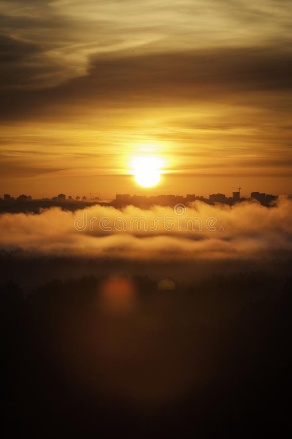 Misty forest fog and clouds on the sunrise morning in the autumn above the treas, view on sun beam, Minsk, Belarus stock image