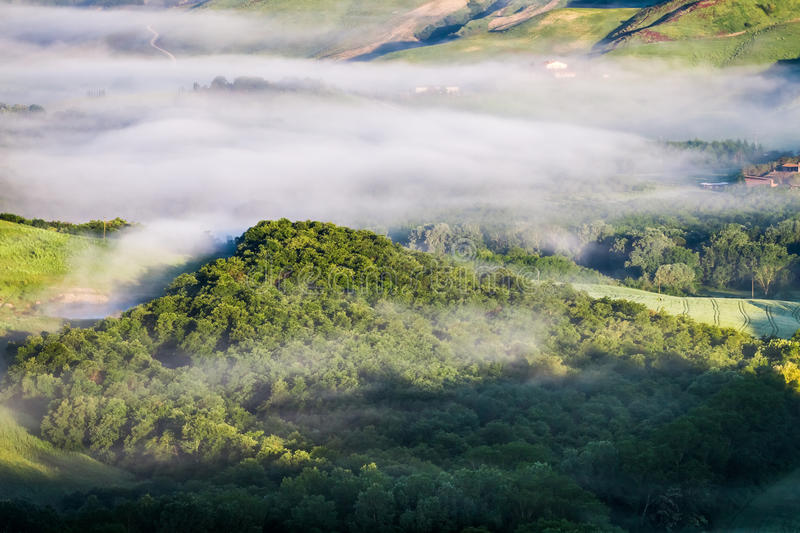 Misty forest hill in Tuscany royalty free stock photos