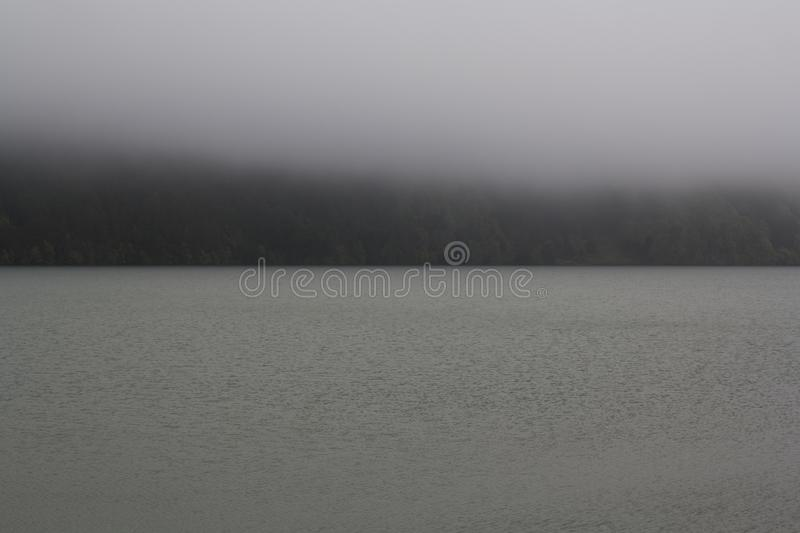 Misty forest lake stock images