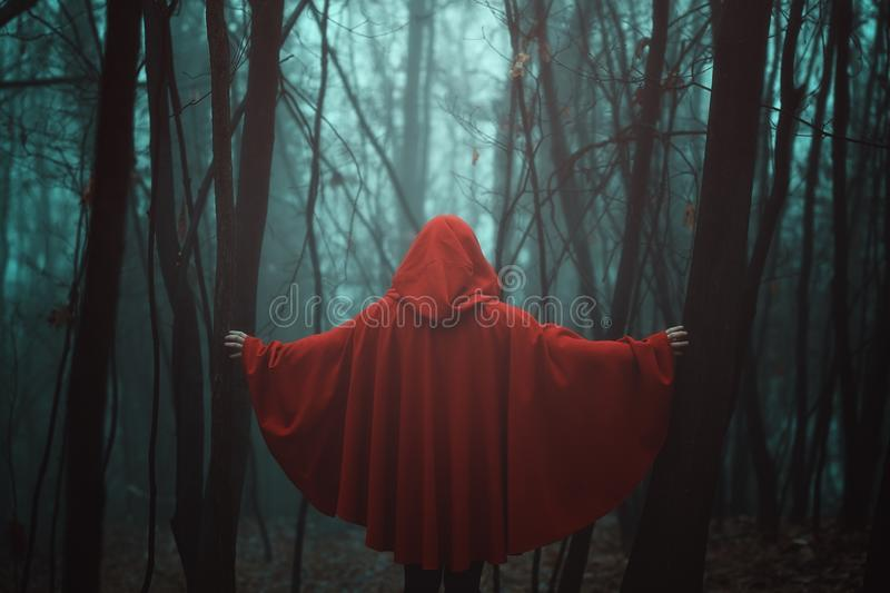 Red hooded figure. Misty forest and red hooded person royalty free stock photos