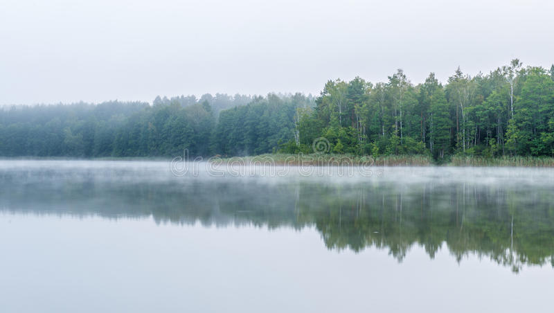 Misty gloomy morning near lake. Misty morning near lake and forest royalty free stock photography