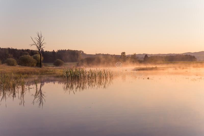 Misty Golden Sunrise Reflecting au-dessus de lac au printemps photo libre de droits