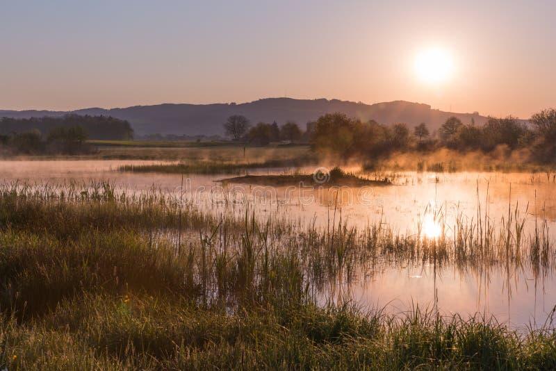 Misty Golden Sunrise Reflecting au-dessus de lac au printemps photographie stock