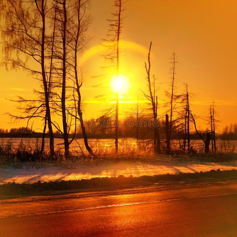 Misty golden sunset stock photos