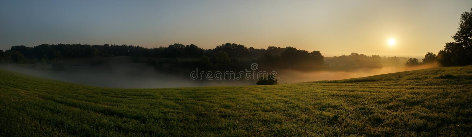 Misty grass field royalty free stock images