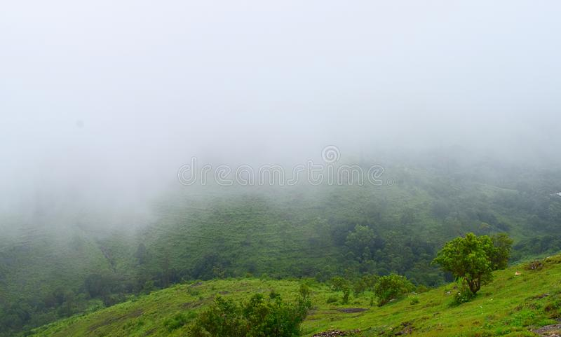 Misty Green Hills in Kerala - Peerumedu, Idukki District - Natural Background. This is a photograph of misty green hills in Peerumedu in Idukki district in stock image