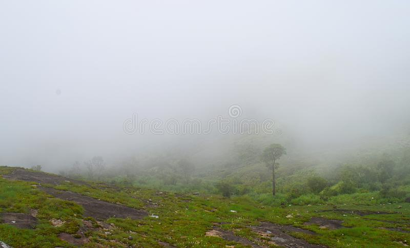 Misty Green Hills - Peerumedu, Idukki District, Kerala, India - Natural Background. This is a photograph of misty green hills in Peerumedu in Idukki district in royalty free stock image