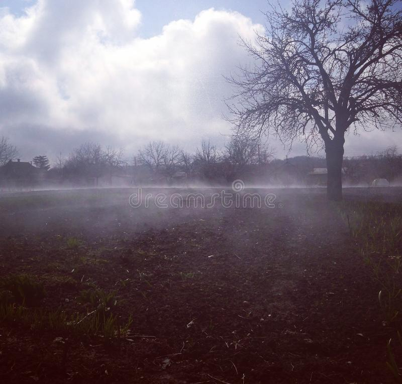 misty haze royalty free stock images