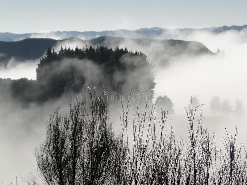 Download Misty hills stock photo. Image of dawn, trees, travek - 20821104