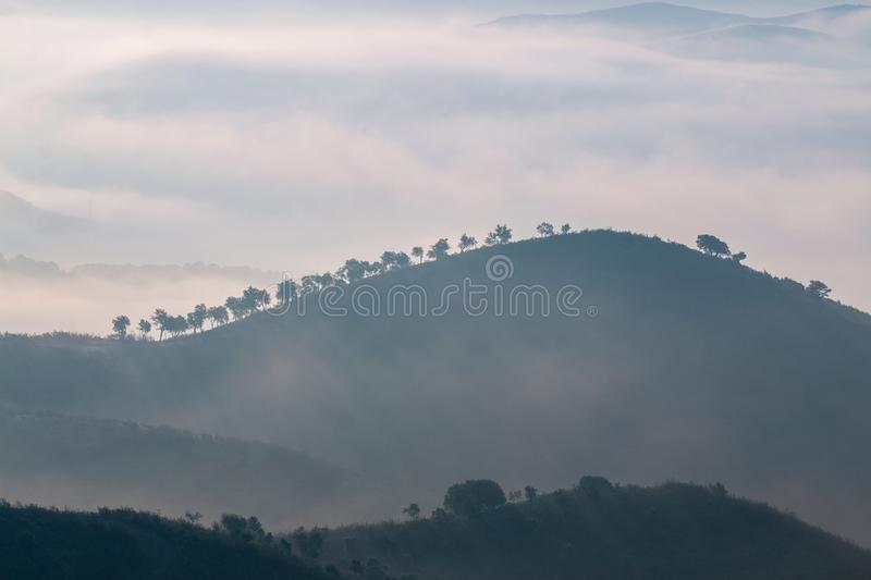Misty hills in the morning. Beautiful view of the morning fog filling the valleys of smooth hills royalty free stock photography