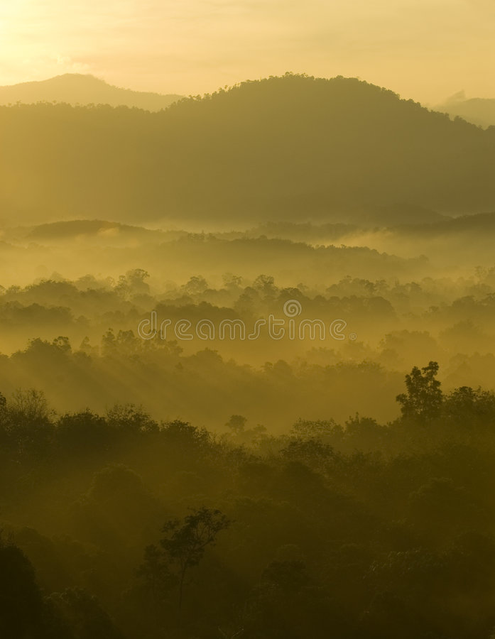 Misty hilly area. Golden colors of misty hilly area with ray of light stock images