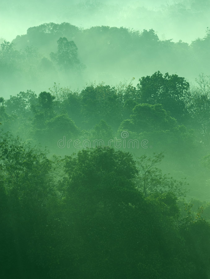 Misty hilly area. Misty hilly area with ray of light royalty free stock photography