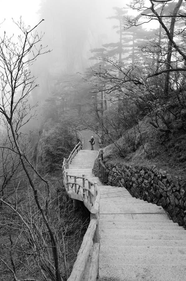 Misty Huangshan Mountains stockbilder