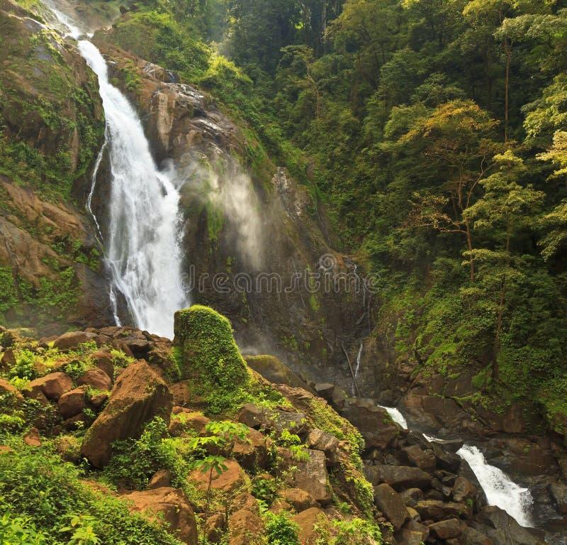 Misty Jungle Waterfall stock photo
