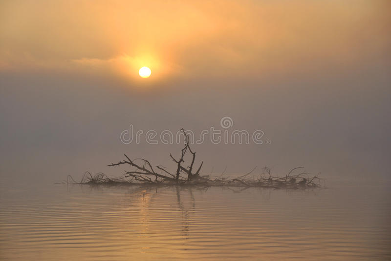 Misty Lake At Sunrise Royalty Free Stock Photos