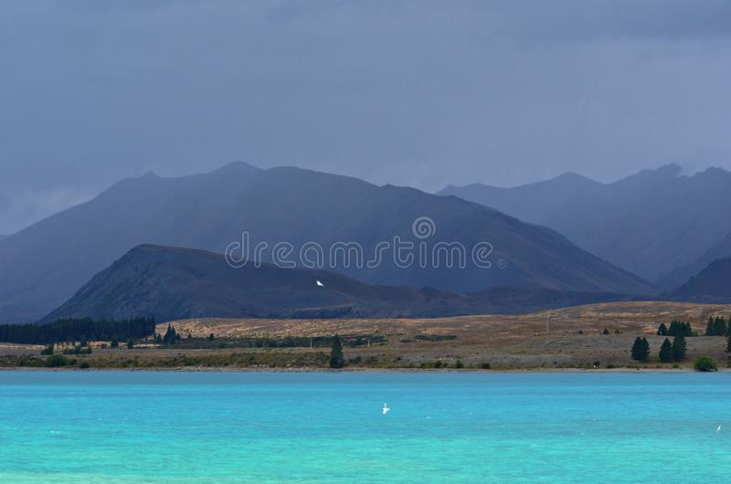 Misty Lake Tekapo, New Zealand royalty free stock photo