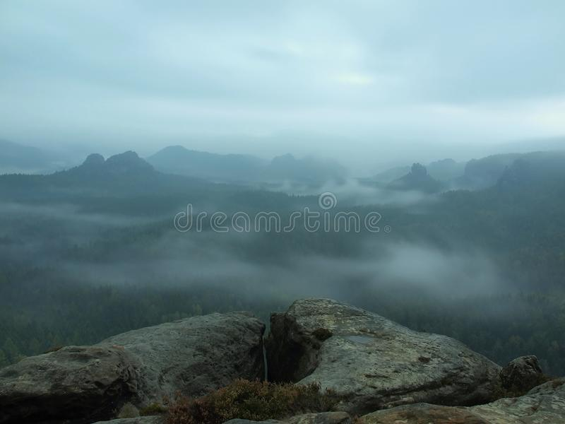 Misty melancholic morning. View over birch tree to deep valley full of heavy mist. Autumn landscape within daybreak after rainy night royalty free stock images
