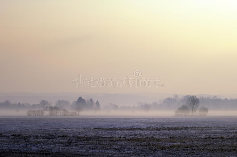 Misty Moor Landscape Royalty Free Stock Image