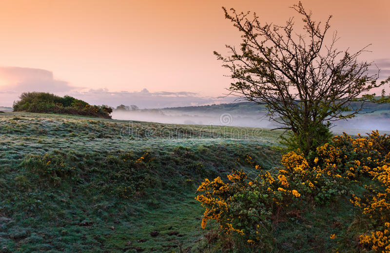 Misty morning. Misty early spring morning in England stock photography
