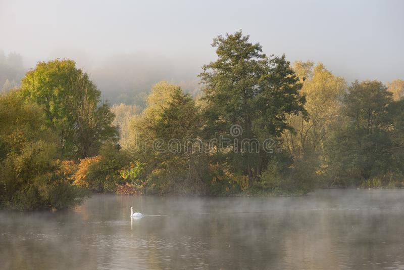misty morning stock photo