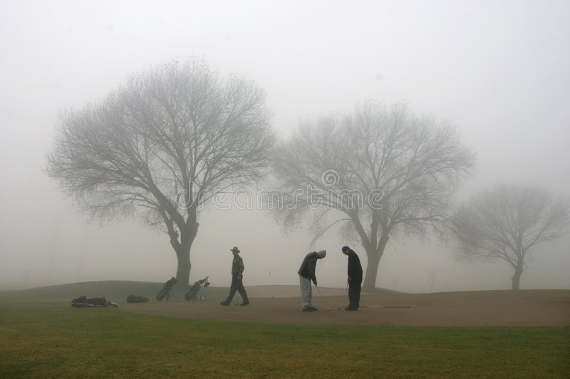 Download Misty morning stock image. Image of winter, mist, course - 207409