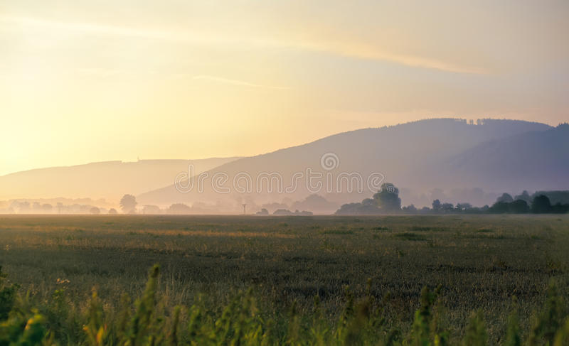 Download Misty morning stock photo. Image of grass, meadow, foggy - 21955414