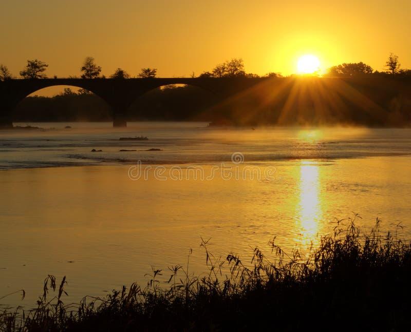 Download Misty Morning stock photo. Image of wildlife, landscape - 27148962