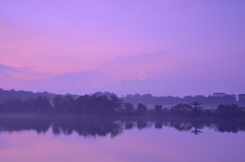 Download Misty Morning stock image. Image of nature, wetland, riverbank - 27202501
