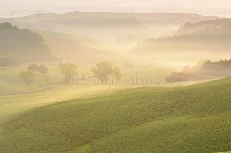 Download Misty morning stock image. Image of ground, horror, autumn - 27997993