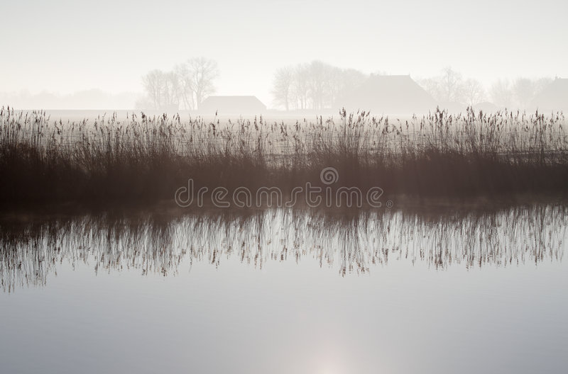 Download Misty morning stock image. Image of serene, winter, magical - 4473879
