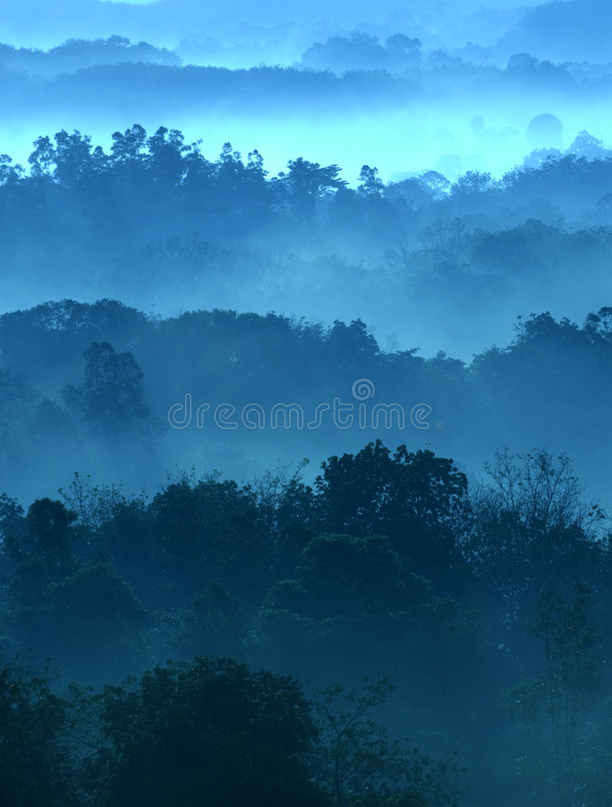 Misty morning. Of hilly area with ray of light royalty free stock photography