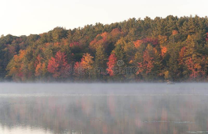 Misty Morning auf Burr Pond stockfotografie