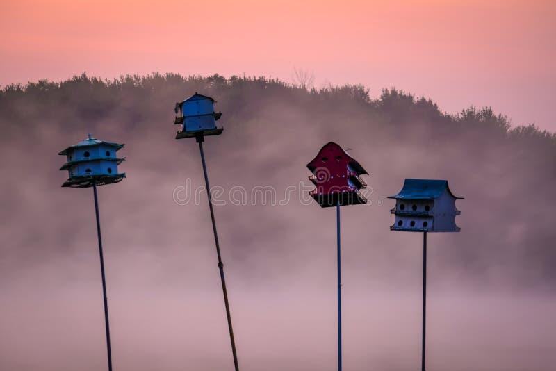 Misty Morning Birdhouses stock afbeeldingen