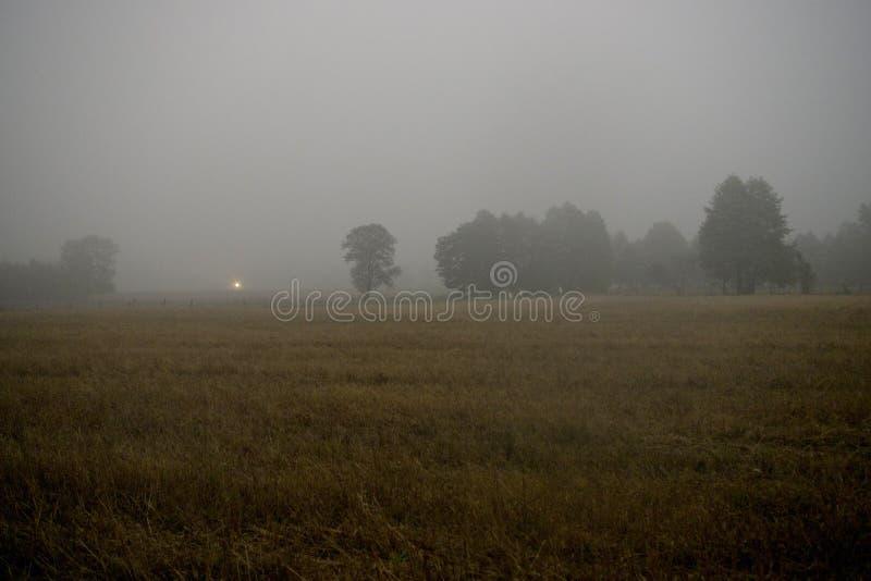 Misty morning field royalty free stock photography