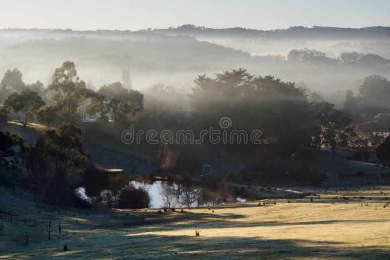 Misty Morning an Hahndorf-Hügel, Süd-Australien stockbild