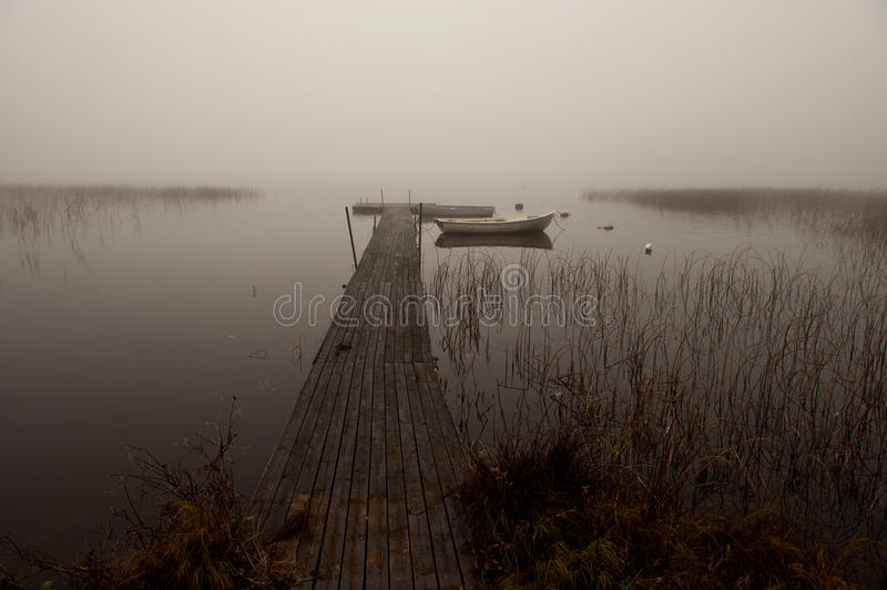 Download Misty morning by the lake stock image. Image of misty - 22290155