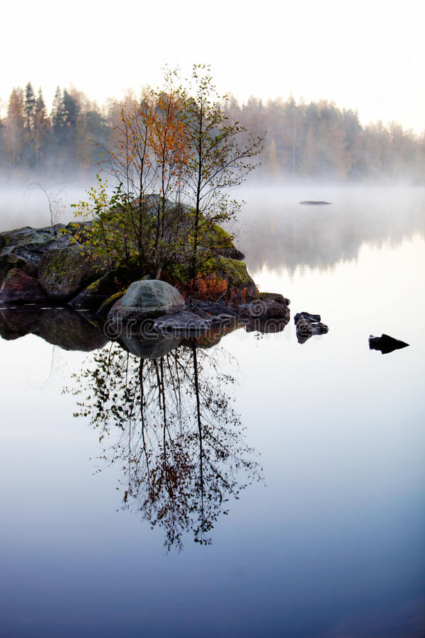 Misty morning. By the lake in autumn royalty free stock image